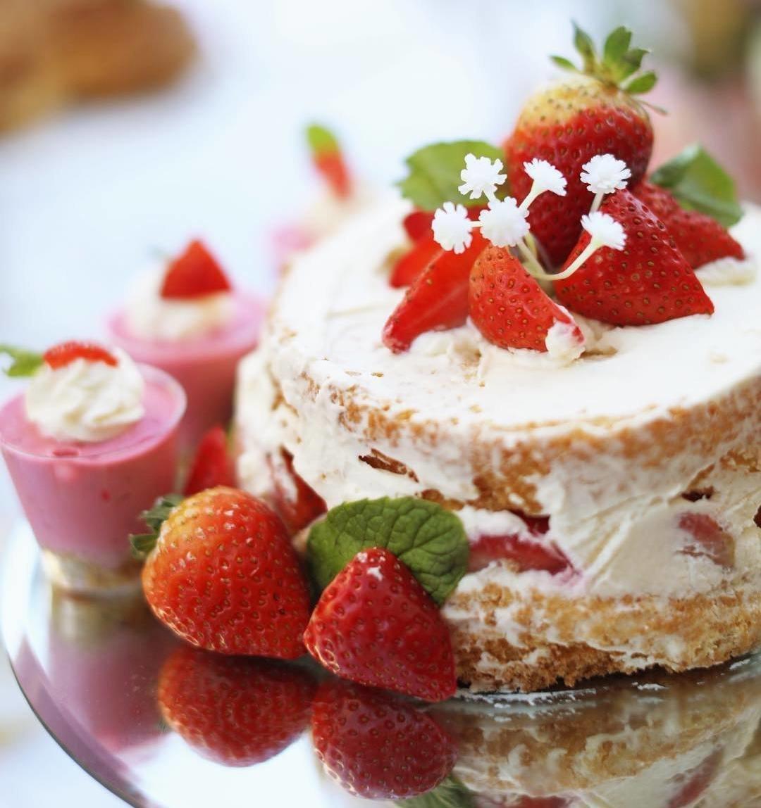 словно картинки тортов бисквит для