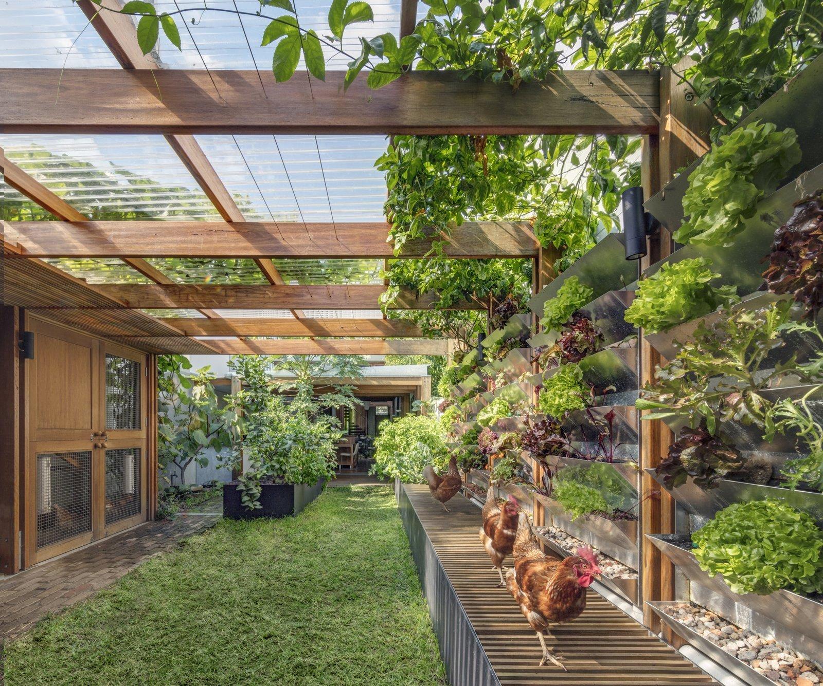 дизайн сада огорода в частном доме фото него под подушкой