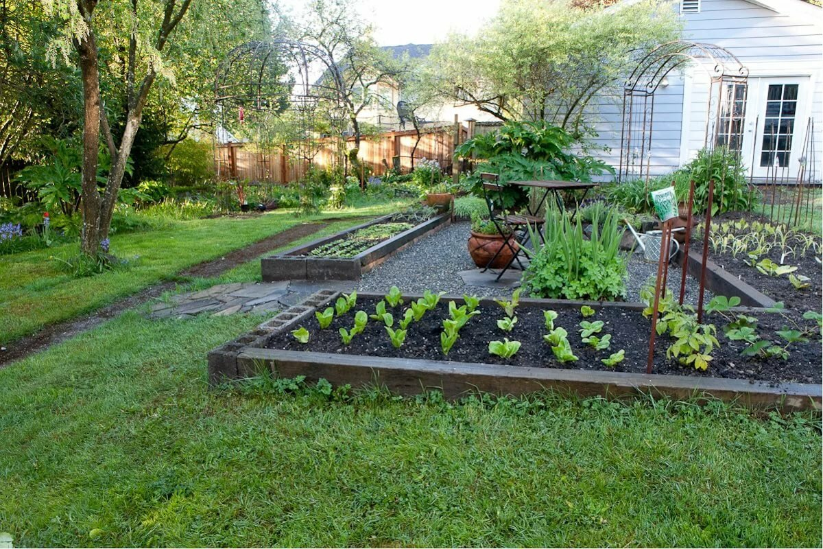 вот дизайн сада огорода в частном доме фото узбекистан
