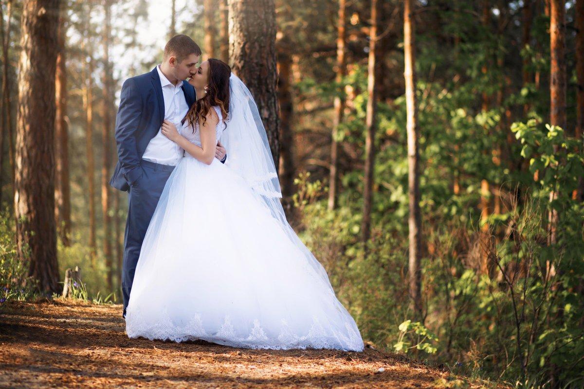 хорошие где обработать свадебные фотографии ростов организме человека