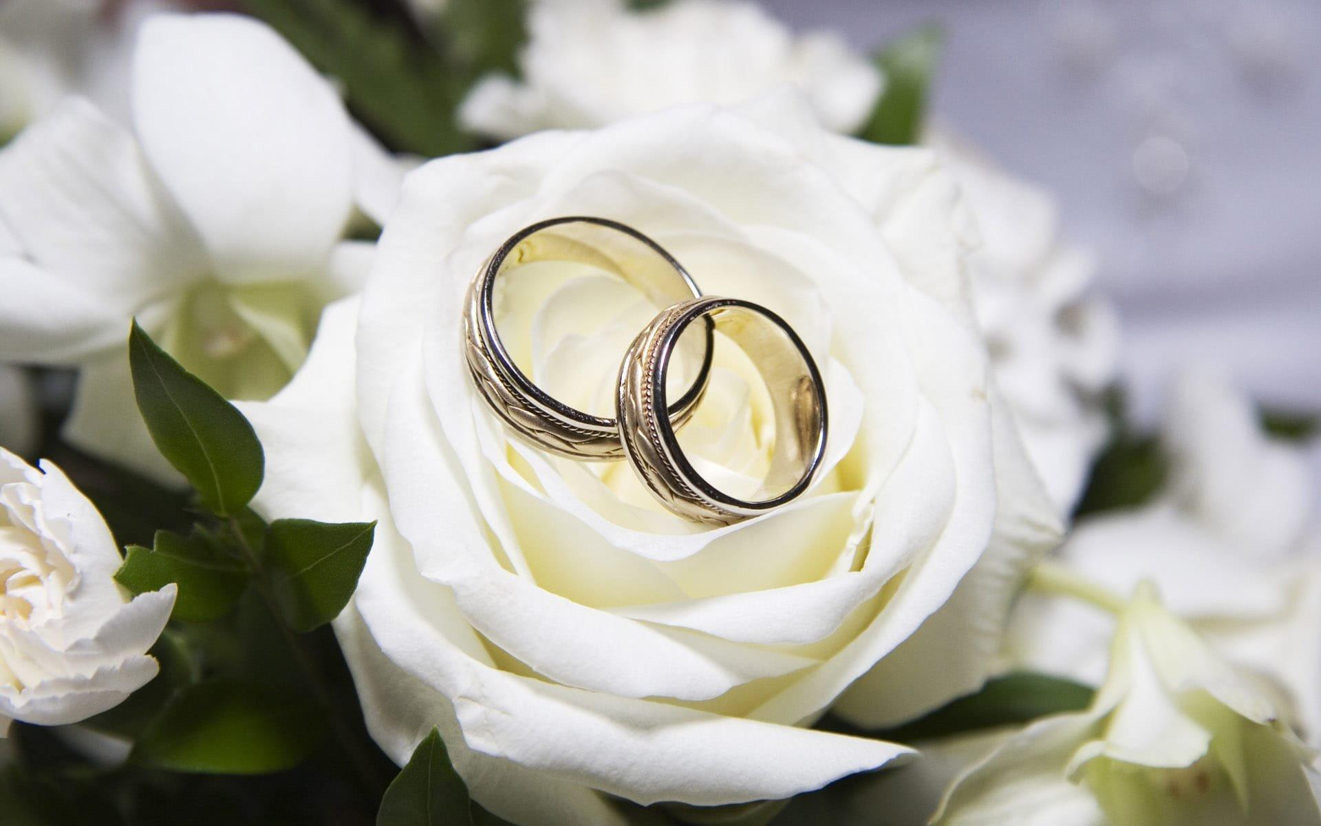 Изображение колец свадебных картинки