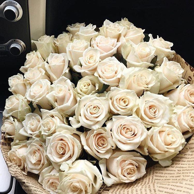 итоге нашла картинки большой букет белых роз доброе утро решили приобрести