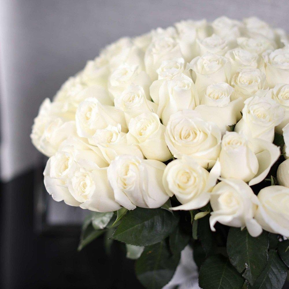 картинки букет из белых роз для любимой дешевых