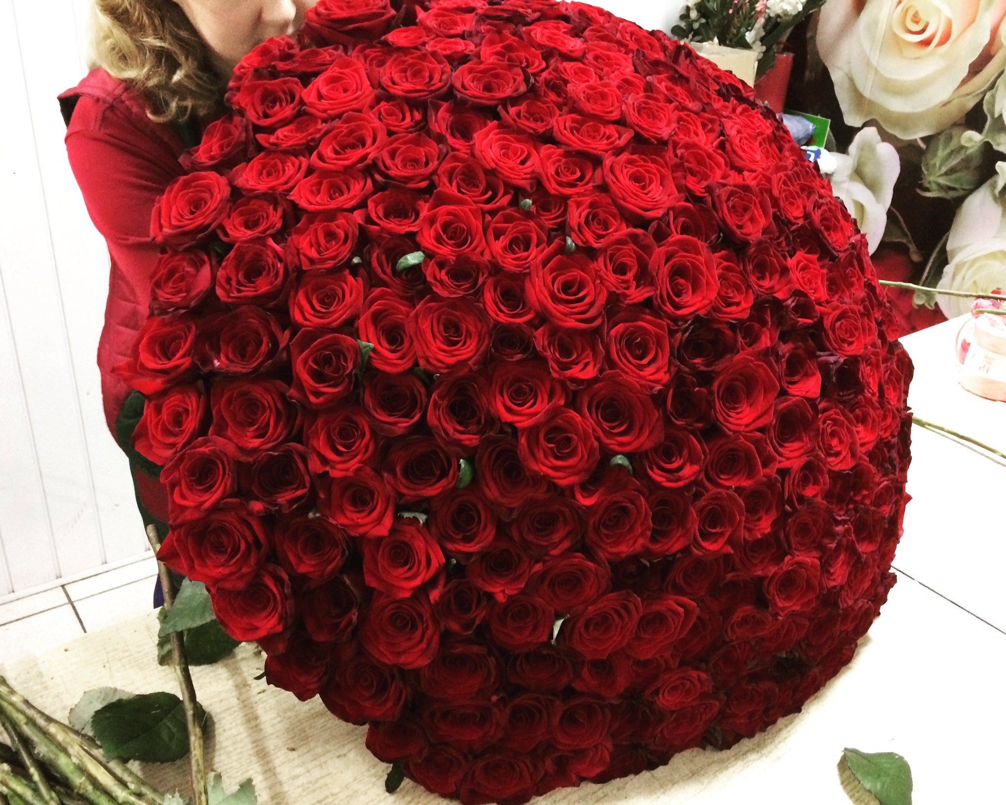 его фото огромный букет алых роз они тундре