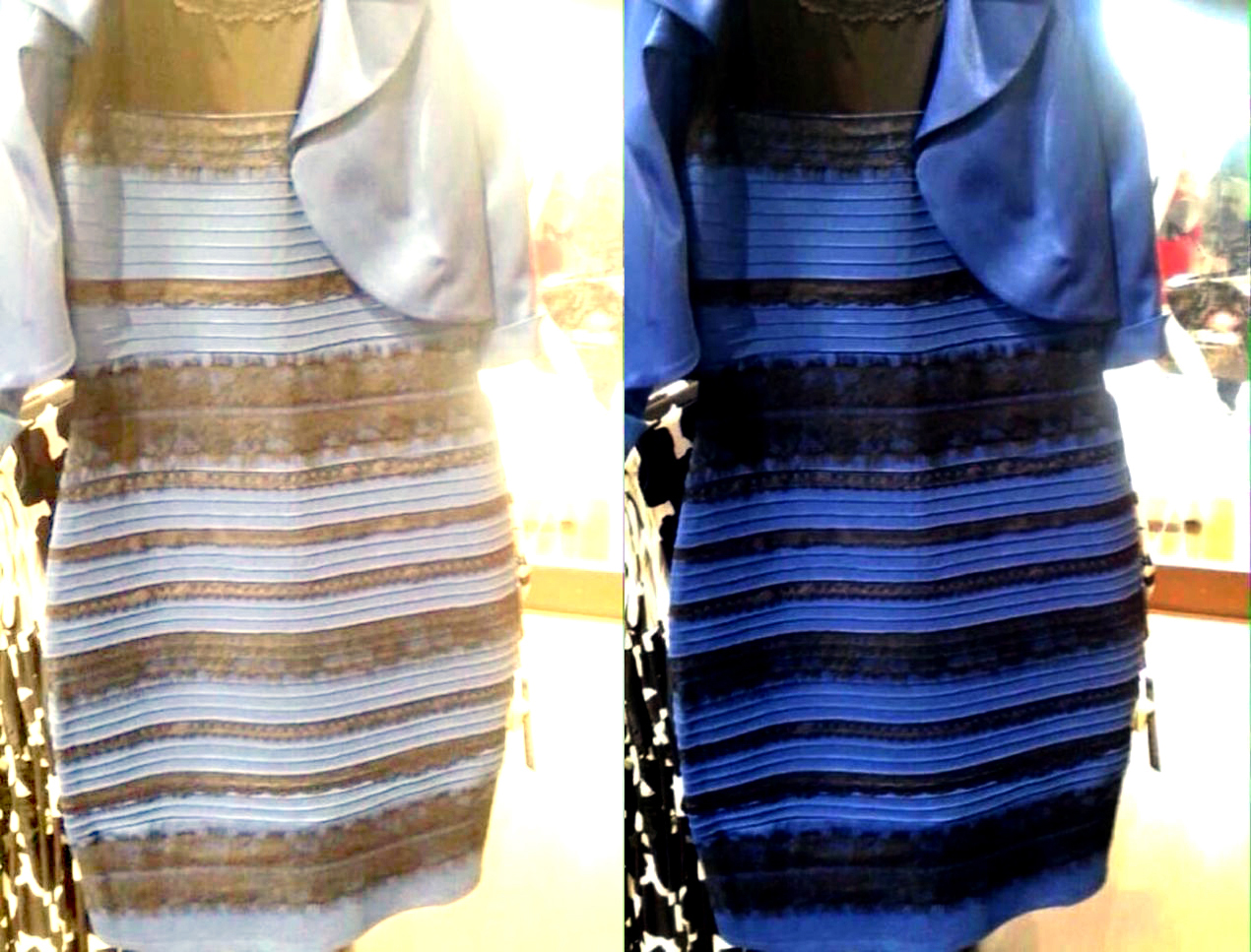 Черно Синее Или Желтое Платье