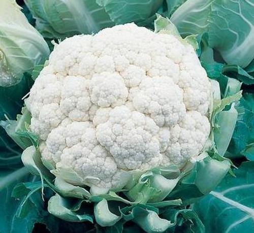 Блюда из цветной капусты.