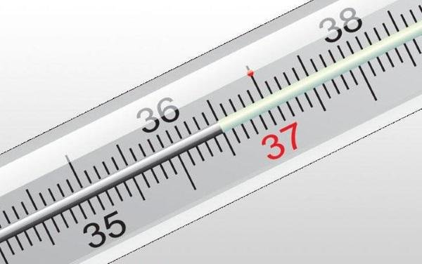 Высокая температура при беременности на ранних сроках